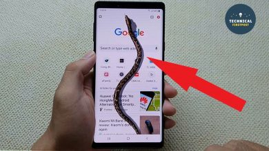 Photo of Way to a Snake crawling on your Phone screen