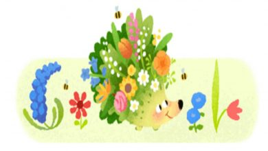 Photo of The Google Doodle For Spring Season 2021 Features An Animated Hedgehog