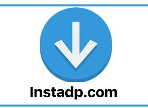 Photo of Instagram Profile Photos Or Stories To Search & Download On The InstaDP Site