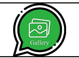 Photo of Gallery for Whatsapp Apk | Manage All The Media From Whatsapp In A Single Place |