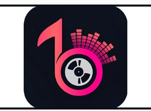 Photo of TikBitz Apk | Start Creating Your Video Status With Your Style |